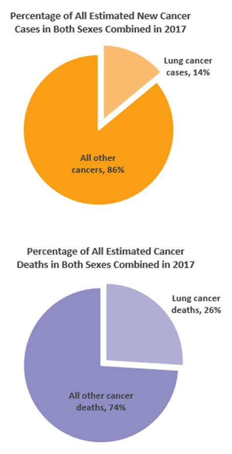 canadian cancer society breast cancer png 314x615